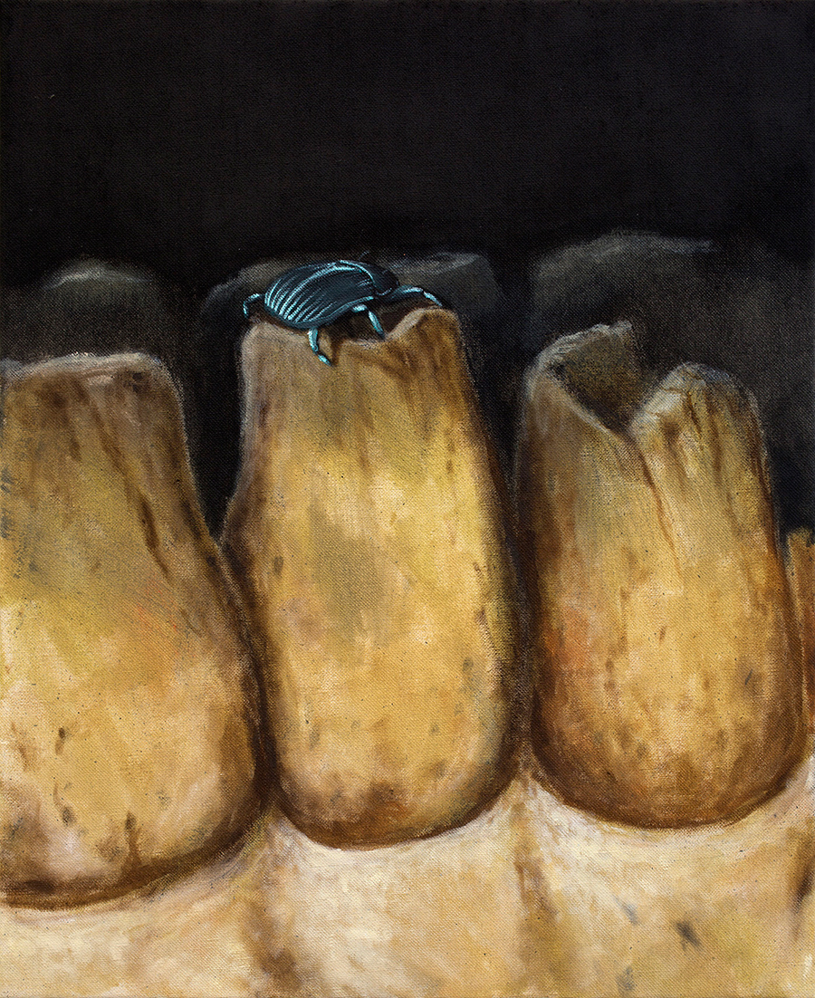 Sebastian Gahntz . Zahnstück mit Käfer